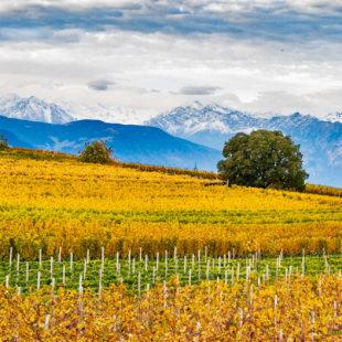 Colori d'autunno a Bolzano